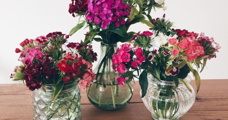 Trend Vasen – Blumen in Szene setzen